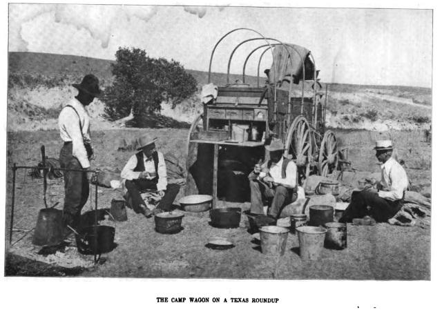 Camp Wagon